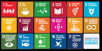 Conseil developpement durable ODD