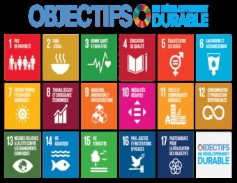 Agenda 2030 ODD