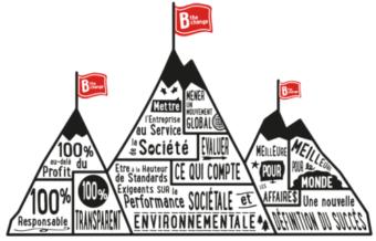 B Corp ambition