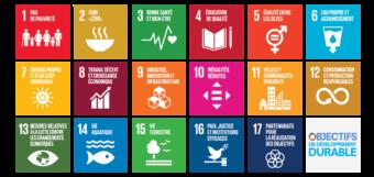 Qu'est-ce que le développement durable odd